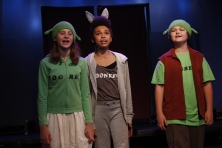 Shrek Summer 2013